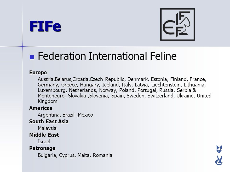 FIFe Federation International Feline Europe