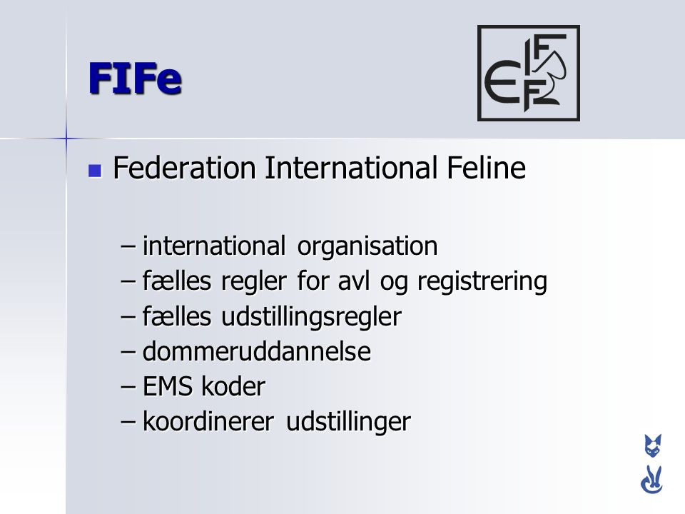 FIFe Federation International Feline international organisation