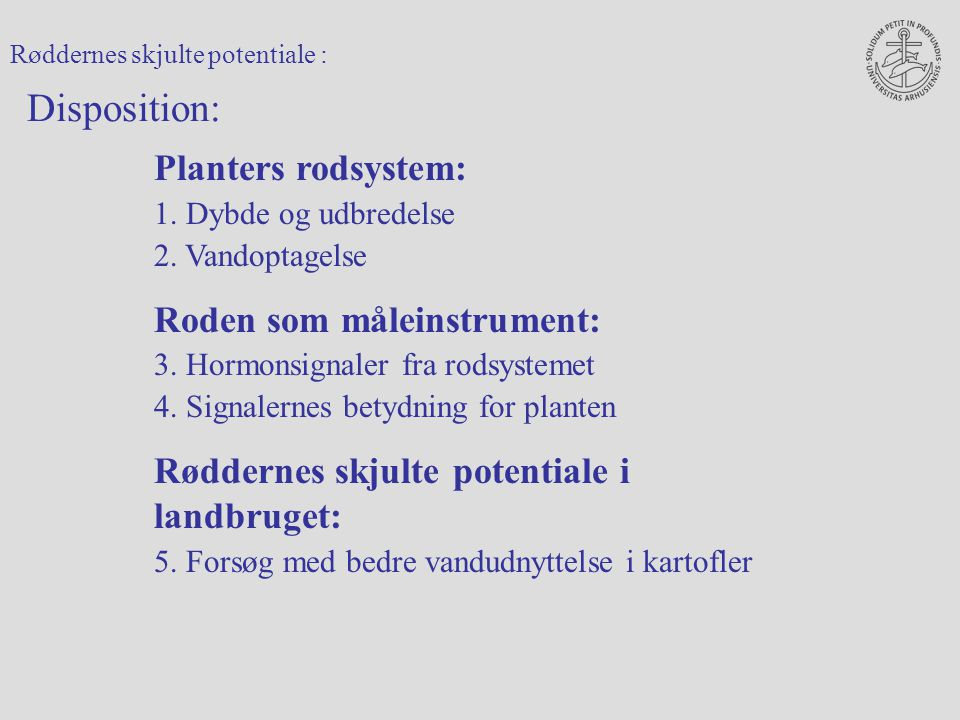 Disposition: Planters rodsystem: Roden som måleinstrument: