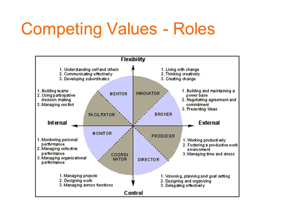 Competing Values - Roles