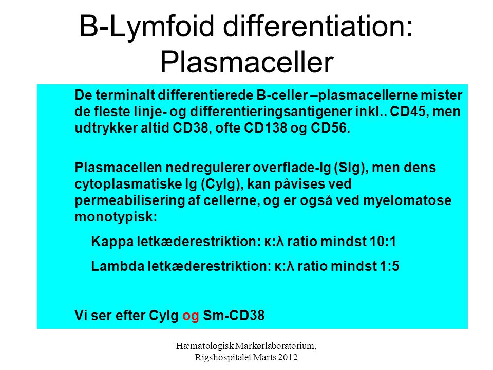 B-Lymfoid differentiation: Plasmaceller