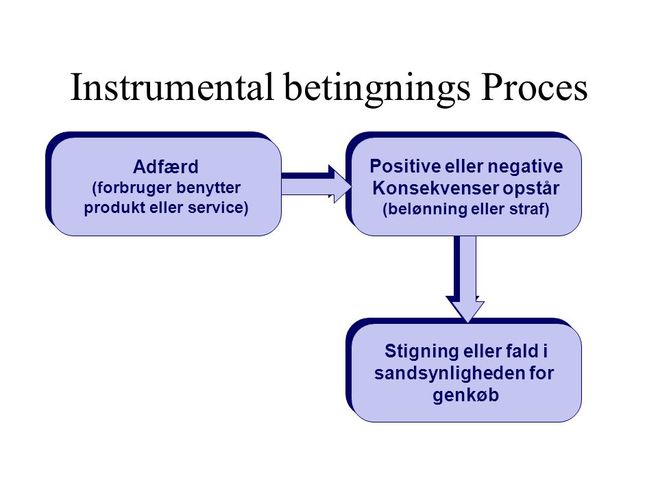 Instrumental betingnings Proces