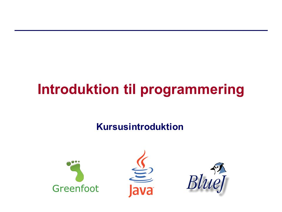 Introduktion til programmering