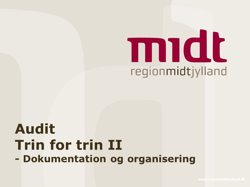 Audit Trin for trin II - Dokumentation og organisering