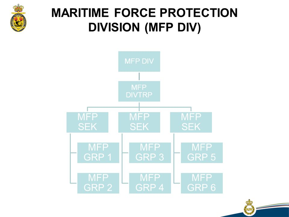 MARITIME FORCE PROTECTION DIVISION (MFP DIV)