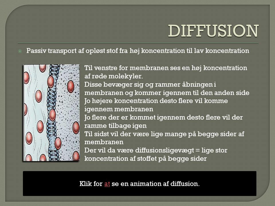 Klik for at se en animation af diffusion.
