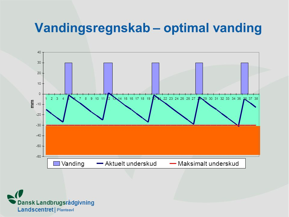 Vandingsregnskab – optimal vanding