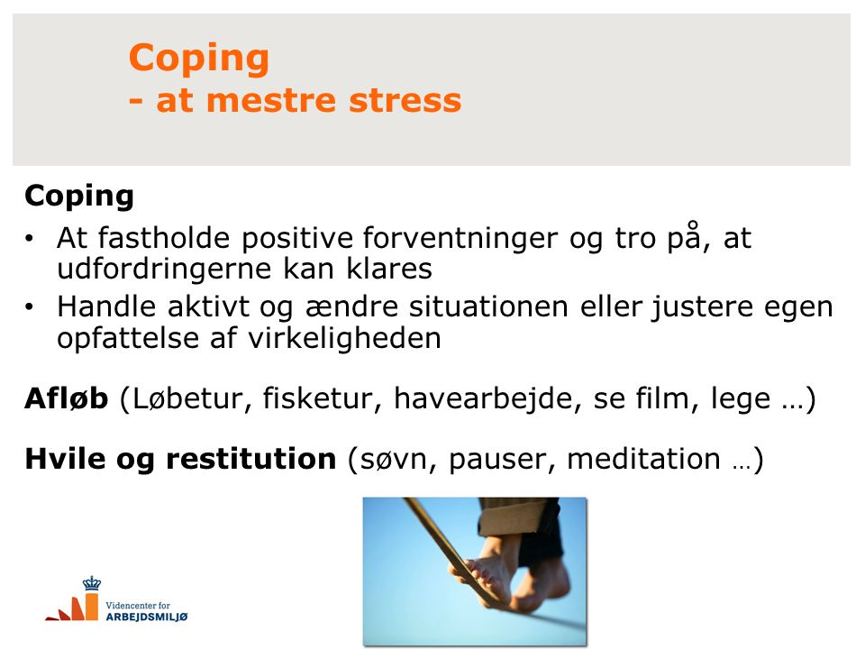 Coping - at mestre stress